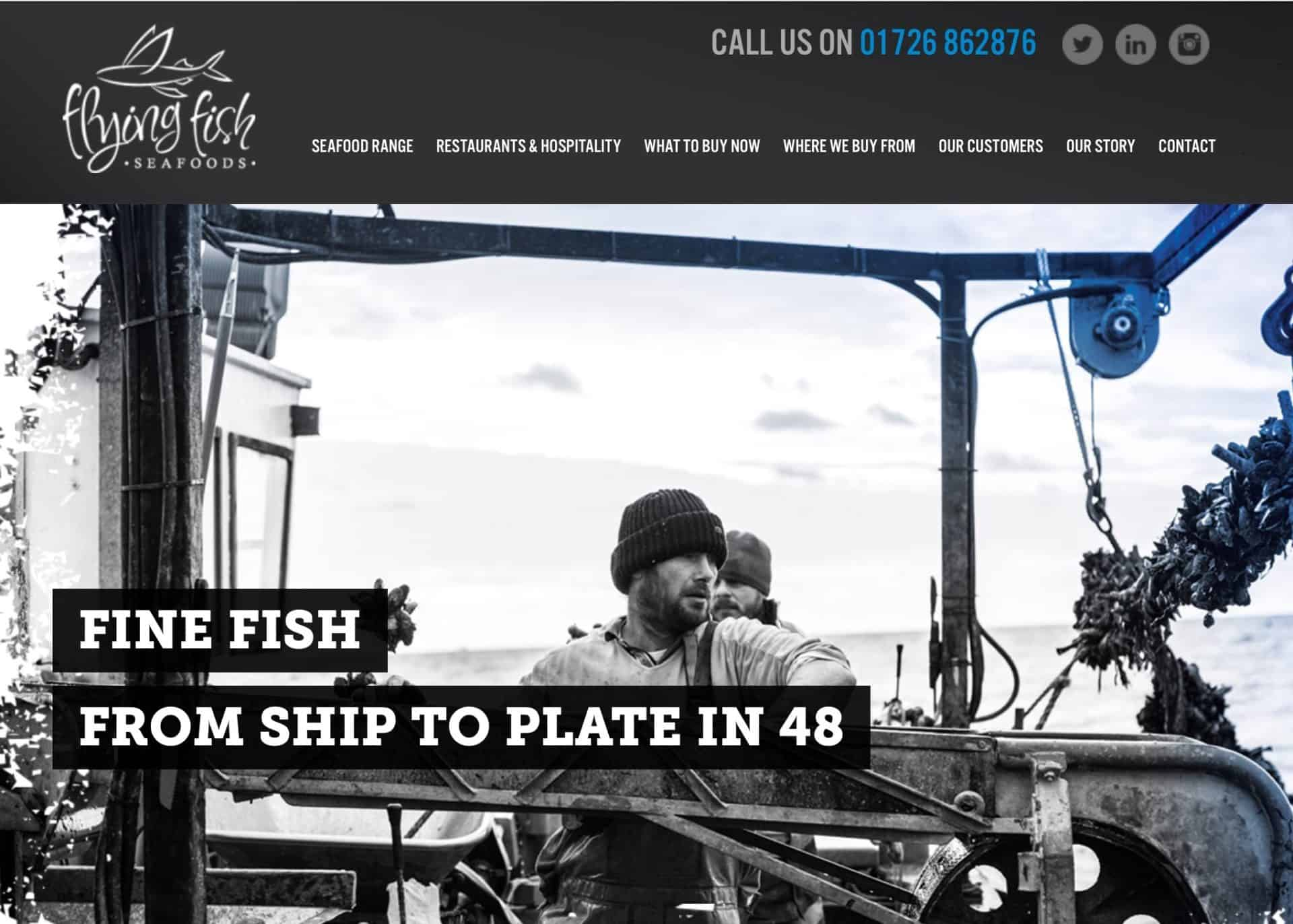 wordpress web design flying fish home 1b